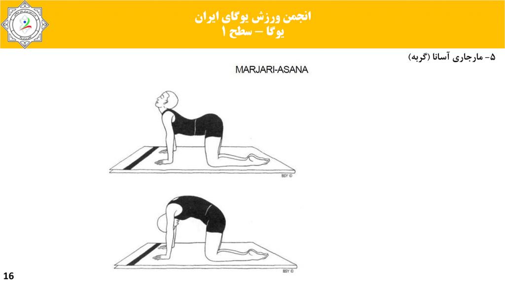 سایت-تخصصی-یوگا-ایران-آموزش-سطح-فنی-۱-یوگا-15