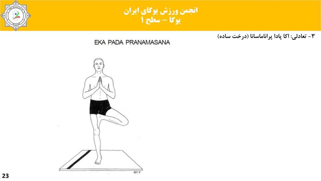 سایت-تخصصی-یوگا-ایران-آموزش-سطح-فنی-۱-یوگا-22