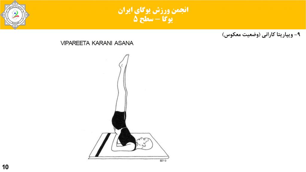سایت-تخصصی-یوگا-ایران-آموزش-سطح-فنی-۵-یوگا-09