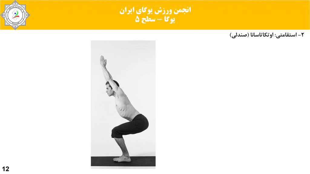 سایت-تخصصی-یوگا-ایران-آموزش-سطح-فنی-۵-یوگا-11