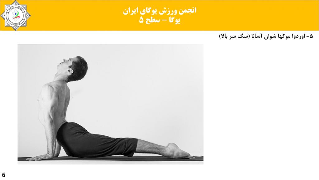 سایت-تخصصی-یوگا-ایران-آموزش-سطح-فنی-۵-یوگا-05